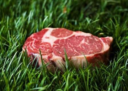 Carne Grass Fed in Italia. Perché sceglierla